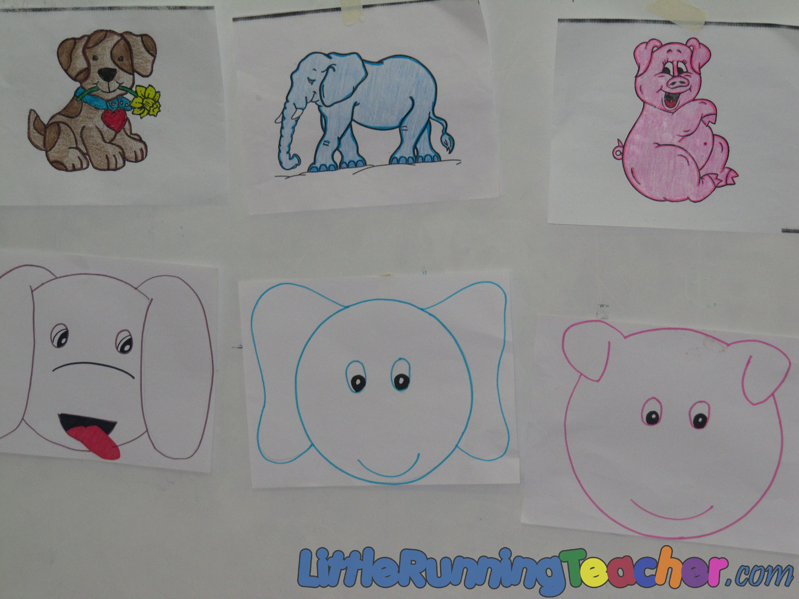 Mixed Animals Drawings Draw Our Own Animal Faces