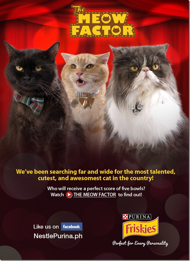 The Meow Factor